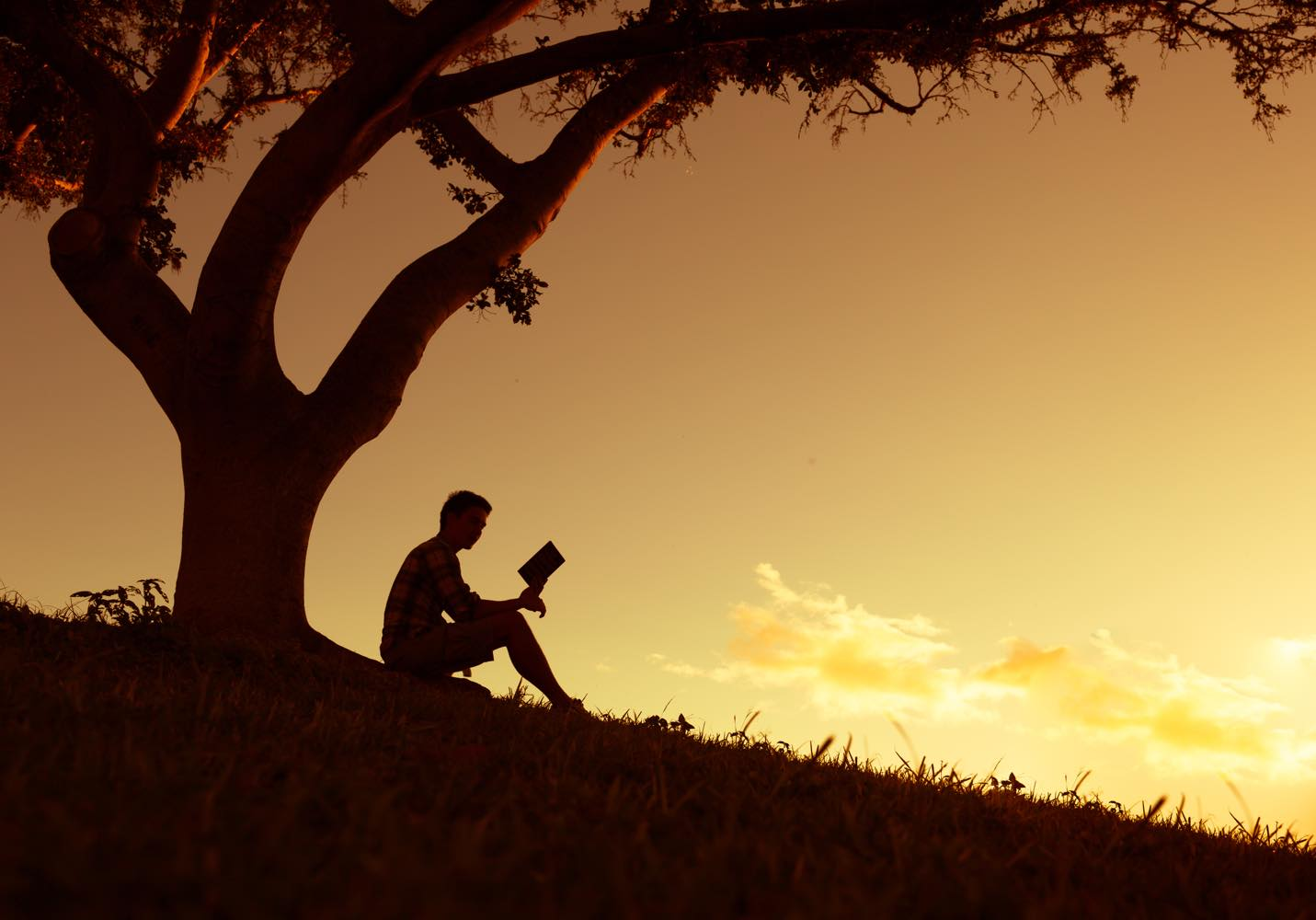 【小説紹介】本谷有希子『腑抜けども、悲しみの愛を見せろ』惰性で毎日を過ごしているあなたへ