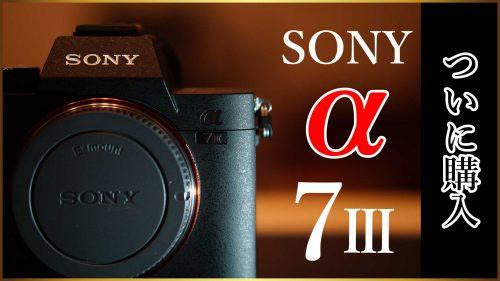 【SONYα7III購入】初心者がフルサイズのミラーレス一眼レフカメラをポチってしまった理由