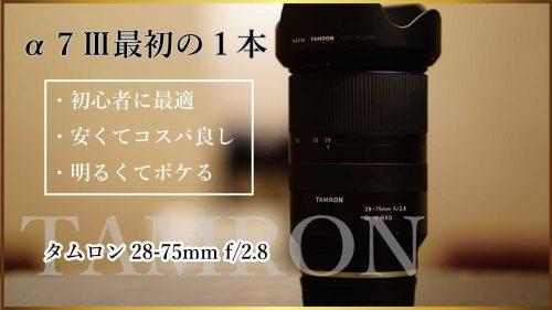 【TAMRON 28-75mm F/2.8 Di III RXD】カメラ初心者がSONY α7IIIの初めの1本に選んだレンズはこれ
